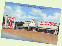 Casper's Alligator and Ostrich Farm - 1950s Florida roadside attraction